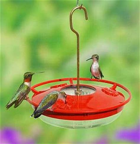 hummzinger hummingbird feeders our most popular models
