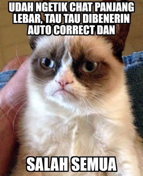 film lucu kucing 76 gambar lucu kucing lucu lagi marah gambar lucu