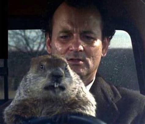 groundhog day fmovies hearne the bottom line on bottom line communications kc
