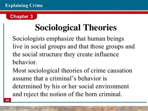 Social Theory Of Crime Essay by Buy An Essay For Cheap 24 7 Interactionist Theory Sociology Wsm Essaytyper Cloudns Cx