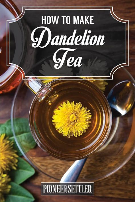 How To Detox With Dandelion Tea by Best Way To Make Dandelion Root Tea Dandelion Root Tea