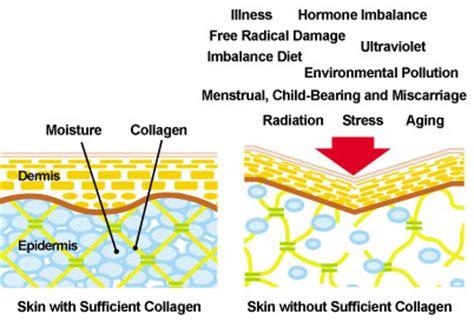 Berapa Collagen rahsia awet muda dari umur berapa harus ambil kolagen