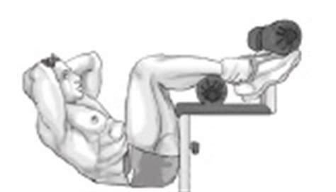 vertical sit up bench decline bench sit ups bodybuilding wizard