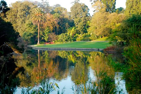 Botanical Gardens Melbourne Australia Royal Botanic Gardens Melbourne