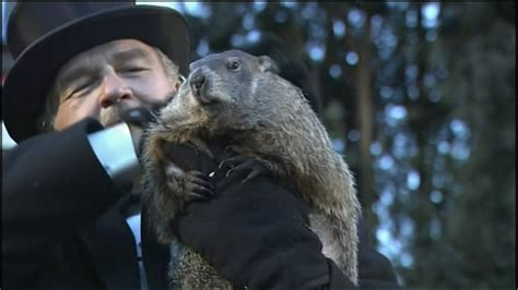 groundhog day phil punxsutawney phil says an early is on the way nbc
