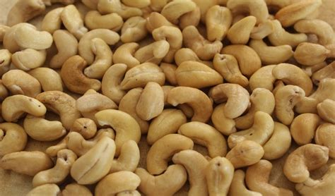Cashew Nut cashew nuts products korea cashew nuts supplier