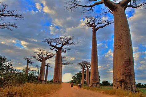 Modèle Lettre De Mission Pour Visa Inde Madagascar Guide Des Destinations Laquotidienne Fr