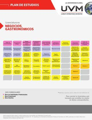 Mba Uvm Plan De Estudios by Licenciatura En Negocios Gastron 243 Micos By Roberto Castillo