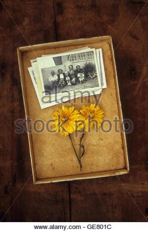 und sohn haben im wohnzimmer alte vintage familienfotos snap eltern buch sohn und