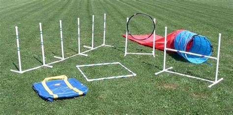 agility equipment for dogs agility equipment and products from nw agility we your dogs