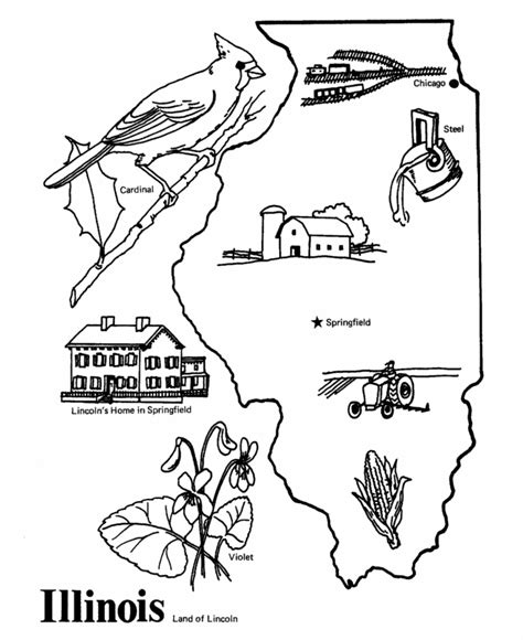 illinois state outline coloring page social studies