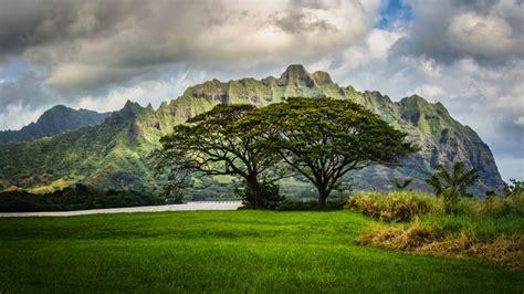 Landscaping Oahu Mountains Trees Oahu Hawaii Landscape Clouds Wallpaper