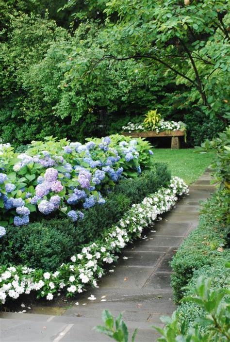 blue hydrangeas boxwood  white impatiens  gardens