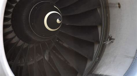 airasia flight grounded after apparent bird strike damages airasia flight turned back to australia after suspected