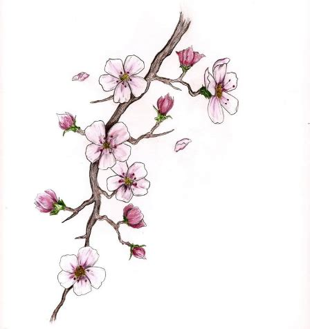 flower branch tattoos designs cherry blossom branch restaurants in dallas ft worth
