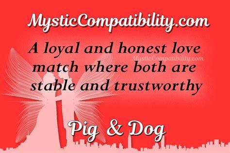 pig dog compatibility mystic compatibility