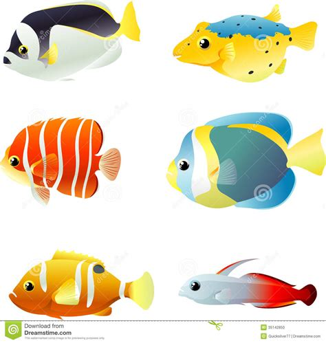 underwater tropical fishes stock photo image