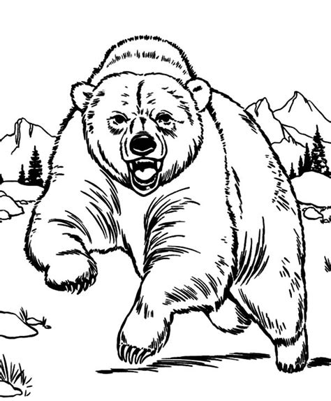 Grizzly Bear Coloring Page More Information Wypadki24 Info Grizzly Coloring Page