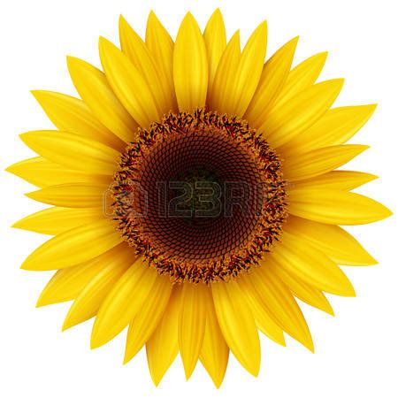 Sun flower clipart - Clipground Free Digital Clip Art Maker
