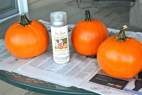 1000 ideas about how to preserve pumpkins on pinterest