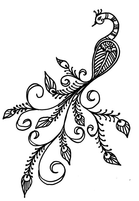 trace tattoo design easy peacock drawing images peacock