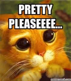 Please Meme - pretty pleaseeee