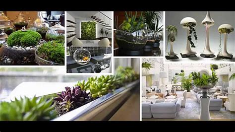 garden ideas indoor garden ideas apartment youtube