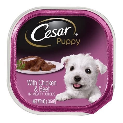 puppy food cesar puppy food ebay