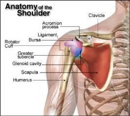 Singapore best shoulder specialist surgeon singapore sports and