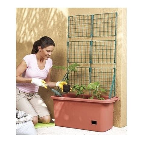 How Self Watering Planters Work by How Do Self Watering Planters Work Organic Gardening Tips