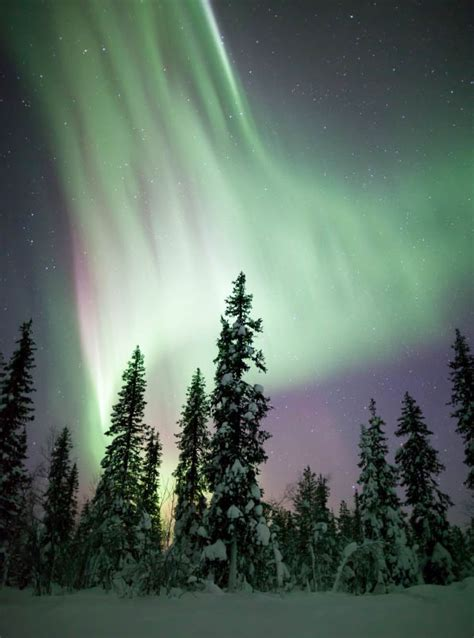 northern lights alaska of year 129 best images about winter on