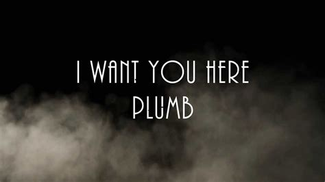 I Need You By Plumb by I Want You Here Plumb