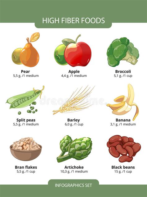 Do You About Black Foods 2 by High Fiber Foods Vector Infographics Stock Vector Image