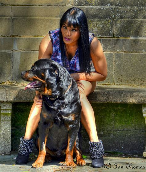 are german rottweilers family dogs pictures of german rottweiler dogs xp new wallpapers lover 6410 osprey drive nineveh