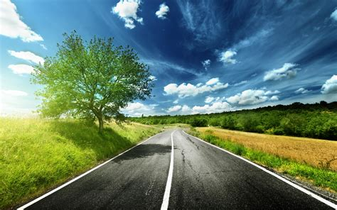 wallpaper green road road full hd wallpaper and background image 2560x1600