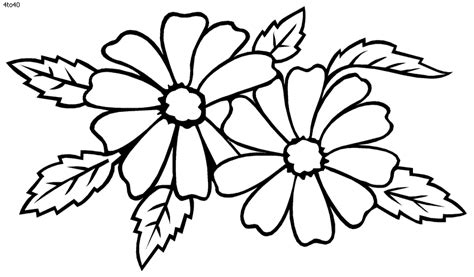coloring pages of different types of flowers dahlia coloring pages