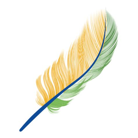 feather tattoo png brazil flag feather transparent png svg vector