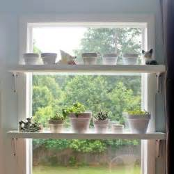25 best ideas about plant shelves on cultivo