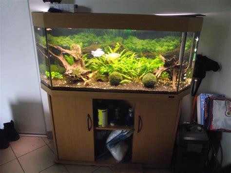Pompa Aquarium Wasser vends aquarium juwel panorama 200 60 le meux goldivore
