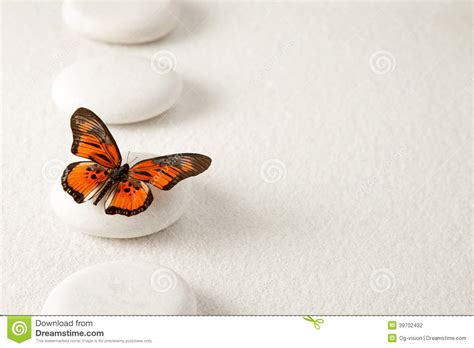 zen stones with butterfly stock photo image 39702432