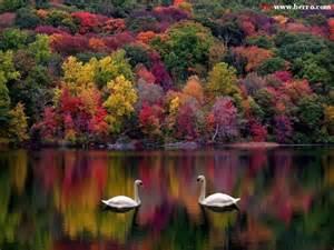 beautiful fall colors new england usa pinterest
