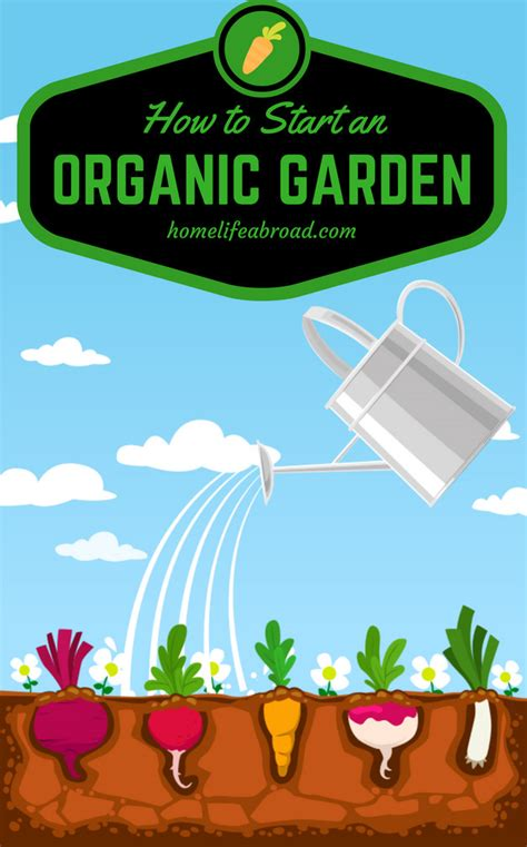how to start an organic garden in your backyard how to start your own organic garden home life abroad