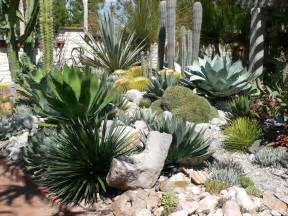 plant combinations on pinterest succulents garden outer space and landscape architecture