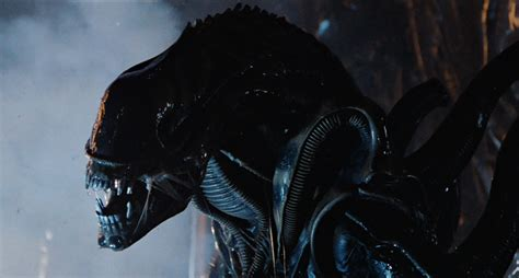 Watch Alien 1979 Full Movie The 20 Best Movie Monsters Of All Time Ranked Collider