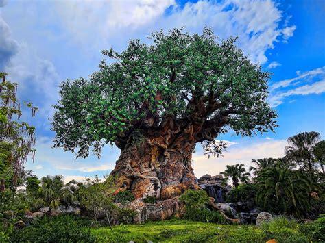 tree  life disney wikipedia
