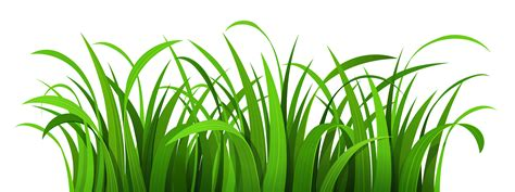 green grass clipart best grass clipart 2200 clipartion