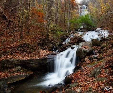 Amicalola Falls State Park Cabins by Amicalola Falls 4 Treasure You Must See
