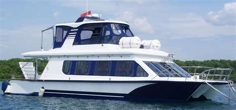 catamaran power sale custom power catamaran