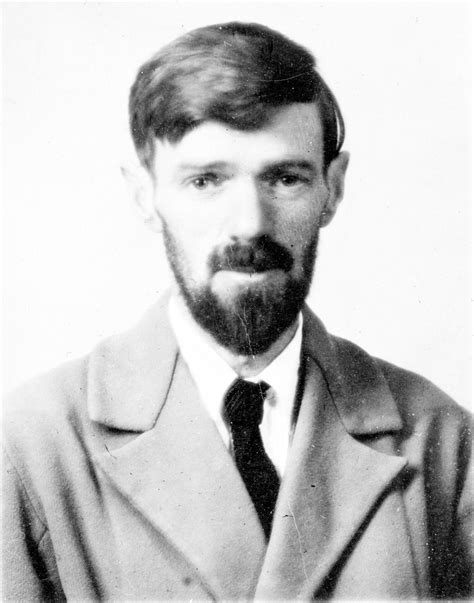 d h lawrence and 0141441550 d h lawrence wikipedia