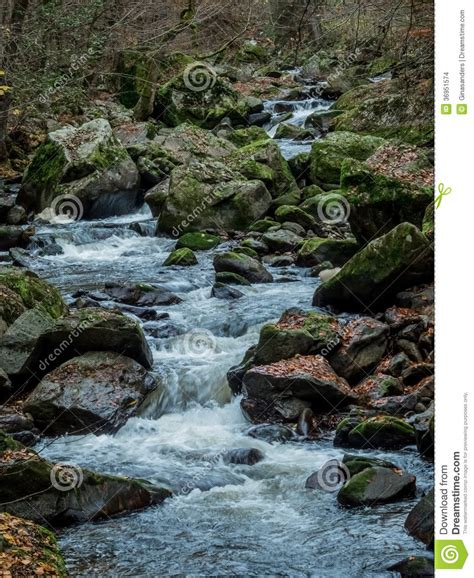 Landscape Experience Creek With Running Water Stock Images Image 36951574
